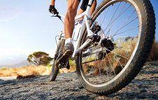 Présentoir Sport – Loisir – Nature